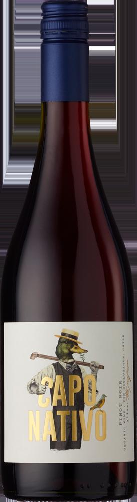 El Capo Pinot Noir Bio Bio (Organic)