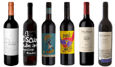 The Malbec Mixed Case