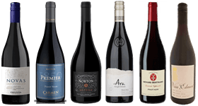 The Pinot Noir Mixed Case