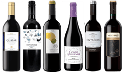 The Rioja Mixed Case