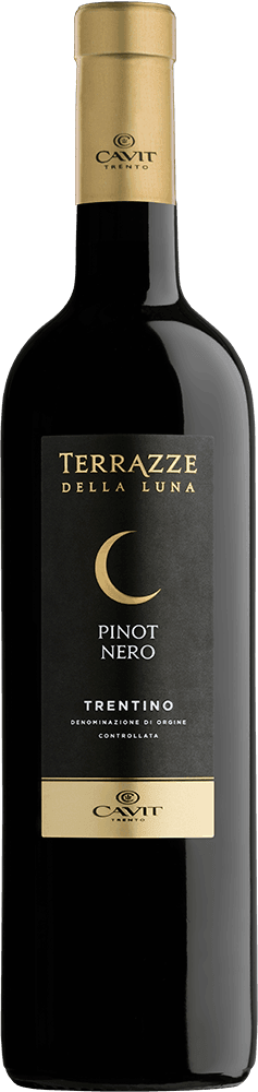 Terrazze della Luna Trentino Pinot Nero