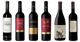 Discover Portugal Reds Mixed Case